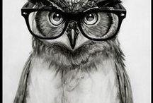 Illustrations / by Christiane Mayr