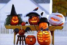 Halloween / by Edith Ganahl
