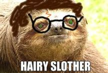 Sloths! / (Because I was running out of good pigeon pictures) / by Aricka Roberson