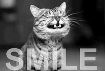 :-) / Different things that make me smile / by Cindy Hiatt