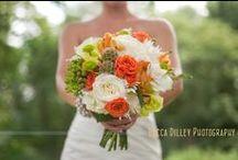 The Weddings / by Amanda Chambers