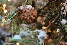 """Christmas Time is Here / """"That's what Christmas is all about, Charlie Brown"""" / by Rachel Ryan"""