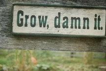 Grow damn it / by Brooke Hesse