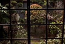 Interior Design | Patio/Garden / by Hermel Delor