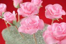 Cake Tutorials - Sugar Flowers / by Frode Breimo