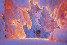 Winter / by Kiki Sonnen