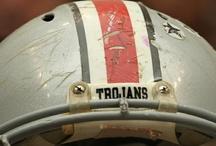 TBI, CTE, & Concussion / by Brain Injury Alliance of Utah
