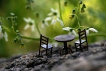 miniature world / by Nany Naiveneedle