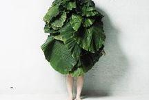 people wearing vegetation.  / by Rachel Segars