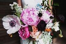 flowers / by Lumi Lz