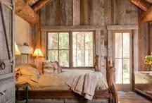 Renovation/Home Ideas / by Laura Bokanovich Crane