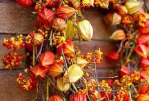Autumnal LOVE / by Sarah B.