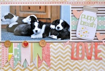 Scrapbook Pages - Pets / by Lauren Mullarkey