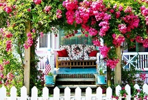 Roses and Cottages by the Sea / by Julie Futch