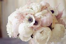Weddings: Flower inspiration / Blooming beautiful inspiration from across the world / by Koren Harvey