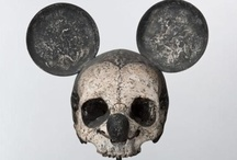 Macabre / A collection of skulls, bones and interesting finds. / by Sushila