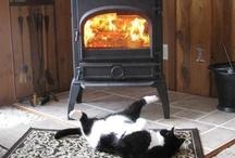 Warm my buns / by Sue C