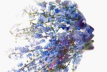 Art ~ Digital / by Ali Nishiguchi