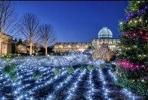 Dominion GardenFest of Lights / by Lewis Ginter Botanical Garden