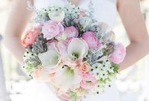 bridal bouquet / by Nadia Hung