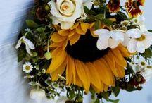 2014 Fall Wedding  / by Kristen Gridley