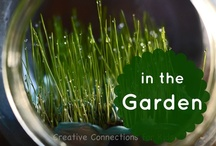Gardening  / In the Garden ~ tips and tricks for my 'green' thumb and learning fun! / by Kristi @ Creative Connections for Kids