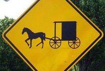 Amish / by Debra Sain