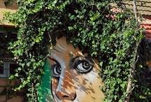 Street Art / by Corne Jooste