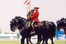 Our Royal Red RCMP / by Jennifer Pylypuk