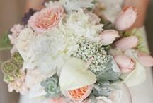 Wedding Ideas / by Shayna Wraight