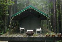 Camping. / by Sami Downing