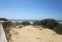 playa, beach, plage, strand, praia,  / Algunas de las playas que he tenido la suerte de visitar. / by Fran Soler