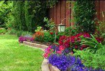 Yard / Garden yard outside decor patio / by Heather Thiessen