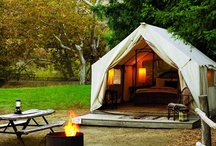 Glamping In Style / by Maria Chang