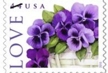 Stamps  / by Ann Luckett