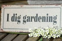 THE GARDEN - WORDS & BOOKS / by Sue Lodmill