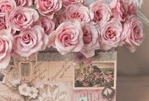~Pretty in Pink~ / by Belinda Petersen