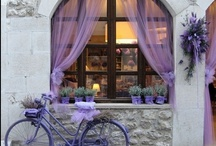 Windows and Doorways / by Laurie Lette