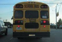 Charter school facts / by Inga Cotton | San Antonio Charter Moms