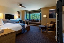 $20M Transformation / by Hyatt Regency Lake Tahoe