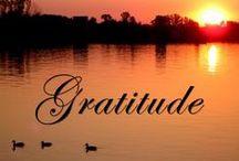 Gratitude / by Jett- Jett