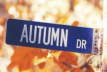 Fall & Halloweeine stuff / by Lysee H