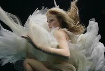 Underwater Magic / by Lisa Golightly