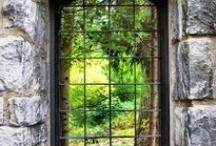 Nature's Frames / by Lois Jones