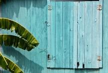 aqua  turquoise / by beachcomber