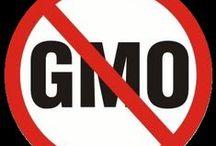 GMO / by Susan Pagliarulo