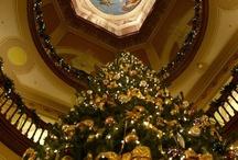 Christmas / by Paula Barlow