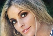 Sharon Tate / by Diane Dowiot