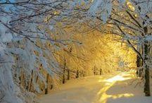 winter / by Brenda Smith