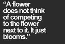 Wise Words / by Brooklyn Dahl